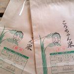 koshi-seimai002